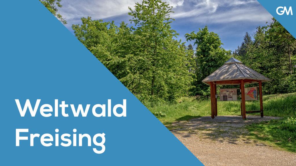 Weltwald Freising